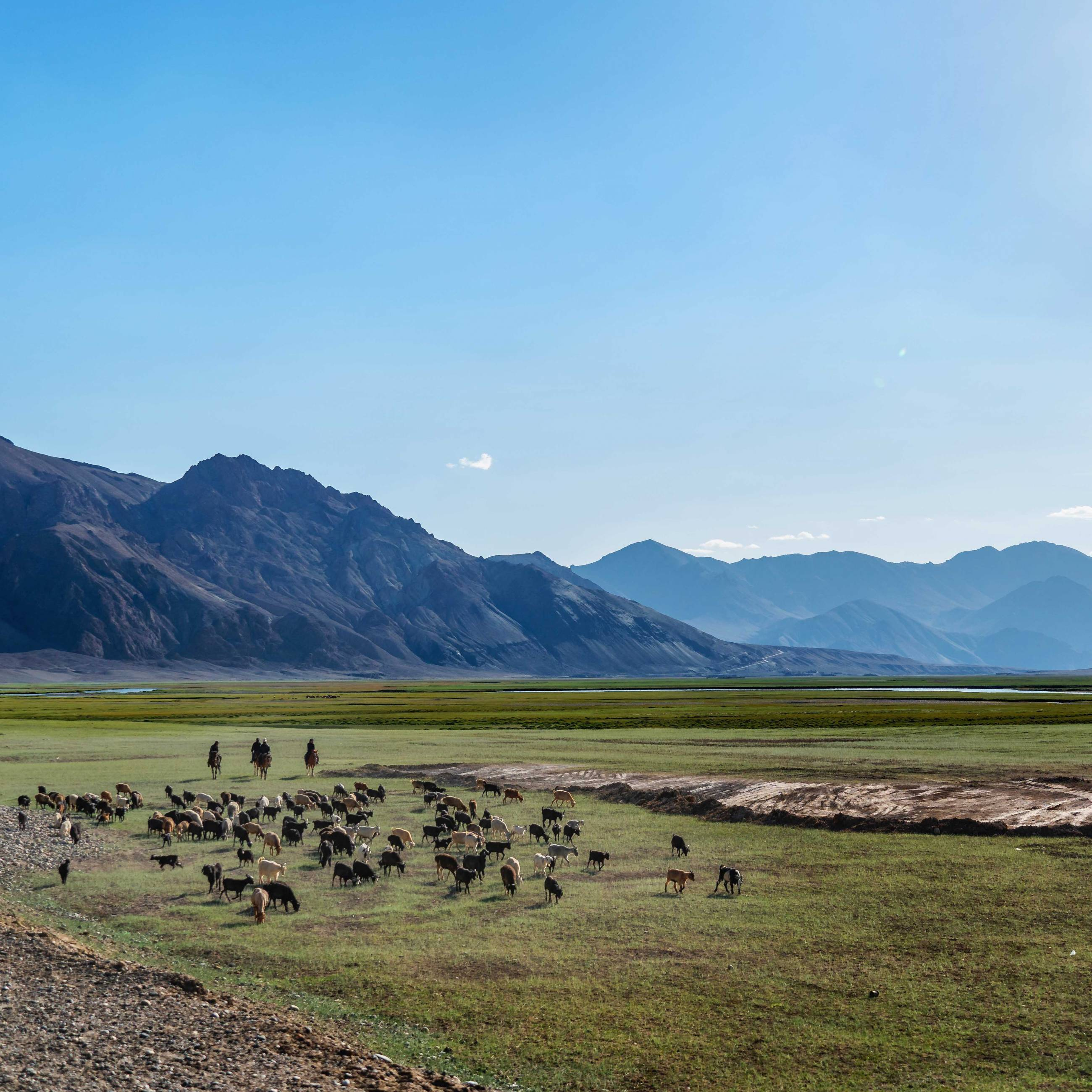 Shepherds on Pamir Highway