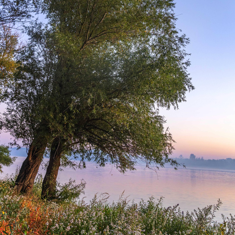 Sunrise in Sremski Karlovci